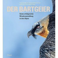 Der Bartgeier: Seine erfolgreiche Wiederansiedlung in den Alpen