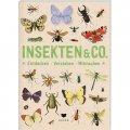 Insekten & Co. - Entdecken * Verstehen * Mitmachen