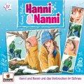 Hanni und Nanni und das Verbrechen im Schnee