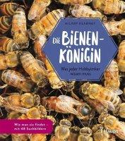 Die Bienenkönigin: Was jeder Hobbyimker wissen muss